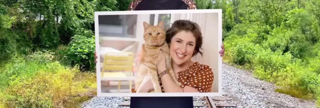 Call Me Kat - Plus One - Cinema Cats